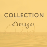 300_catalogue_collection_2